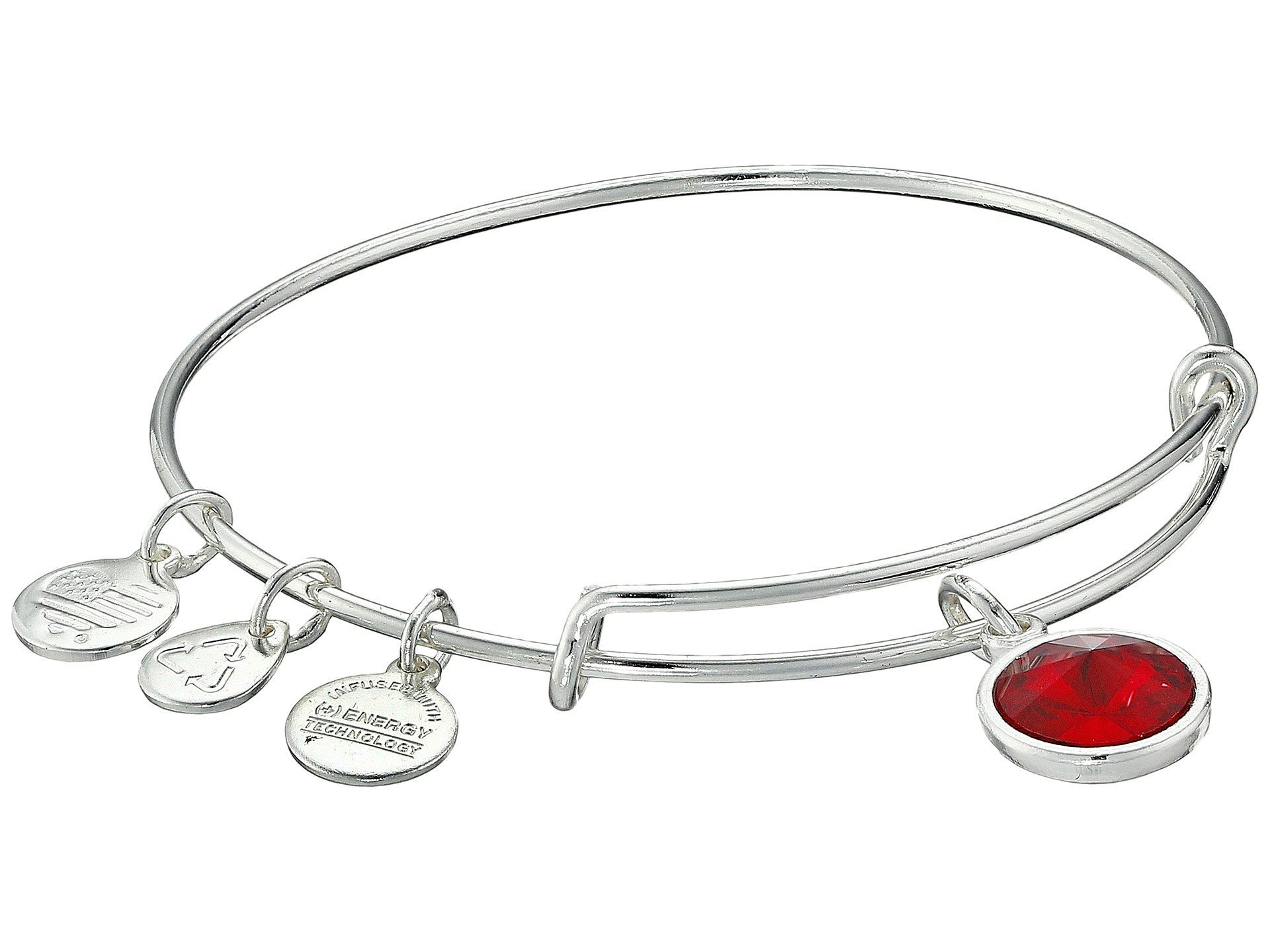 Alex and Ani★January Birthstone Charm Bangle▽送料関税込