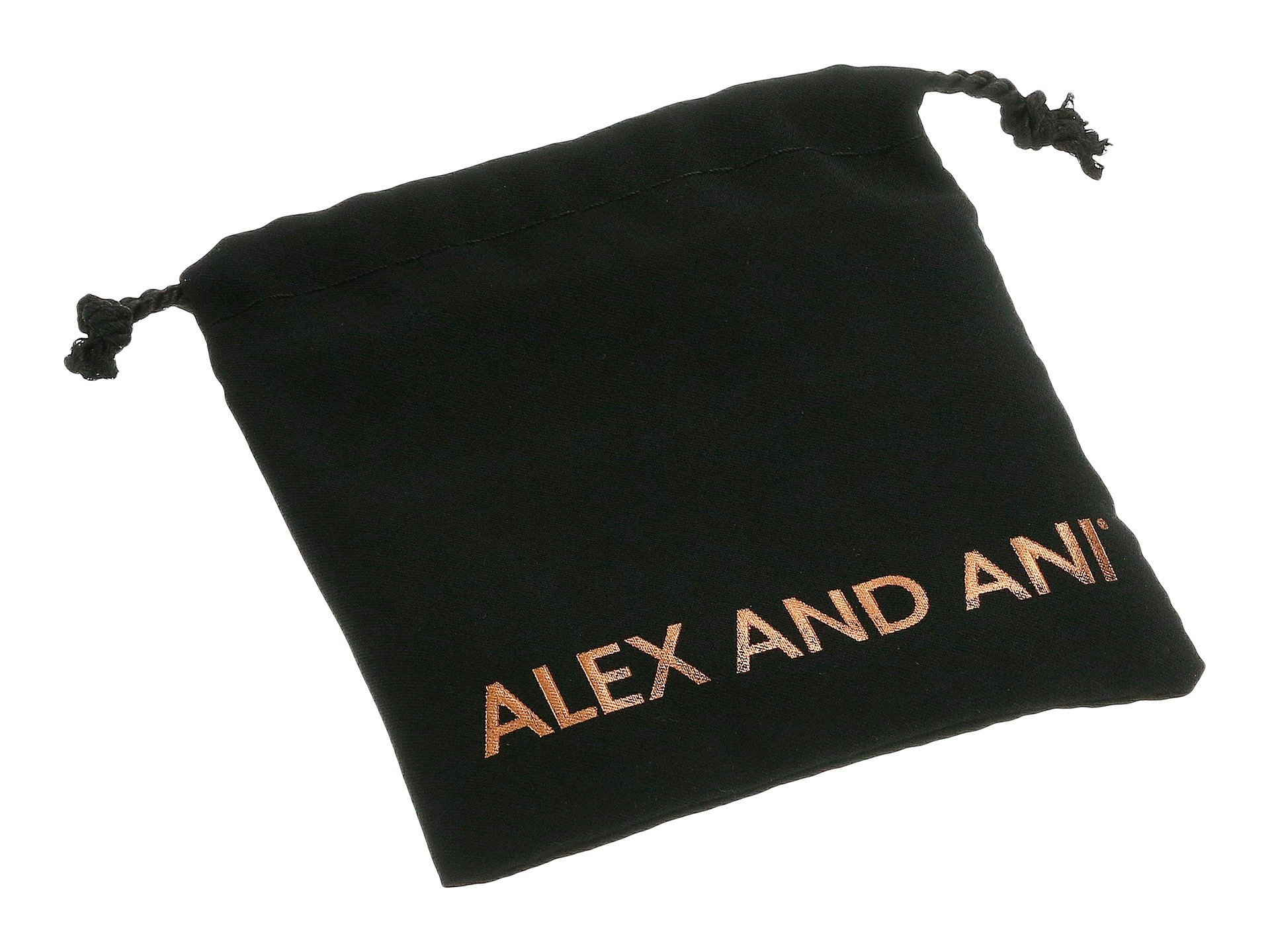 Alex and Ani★Charity by Design Side by Side▽送料関税込