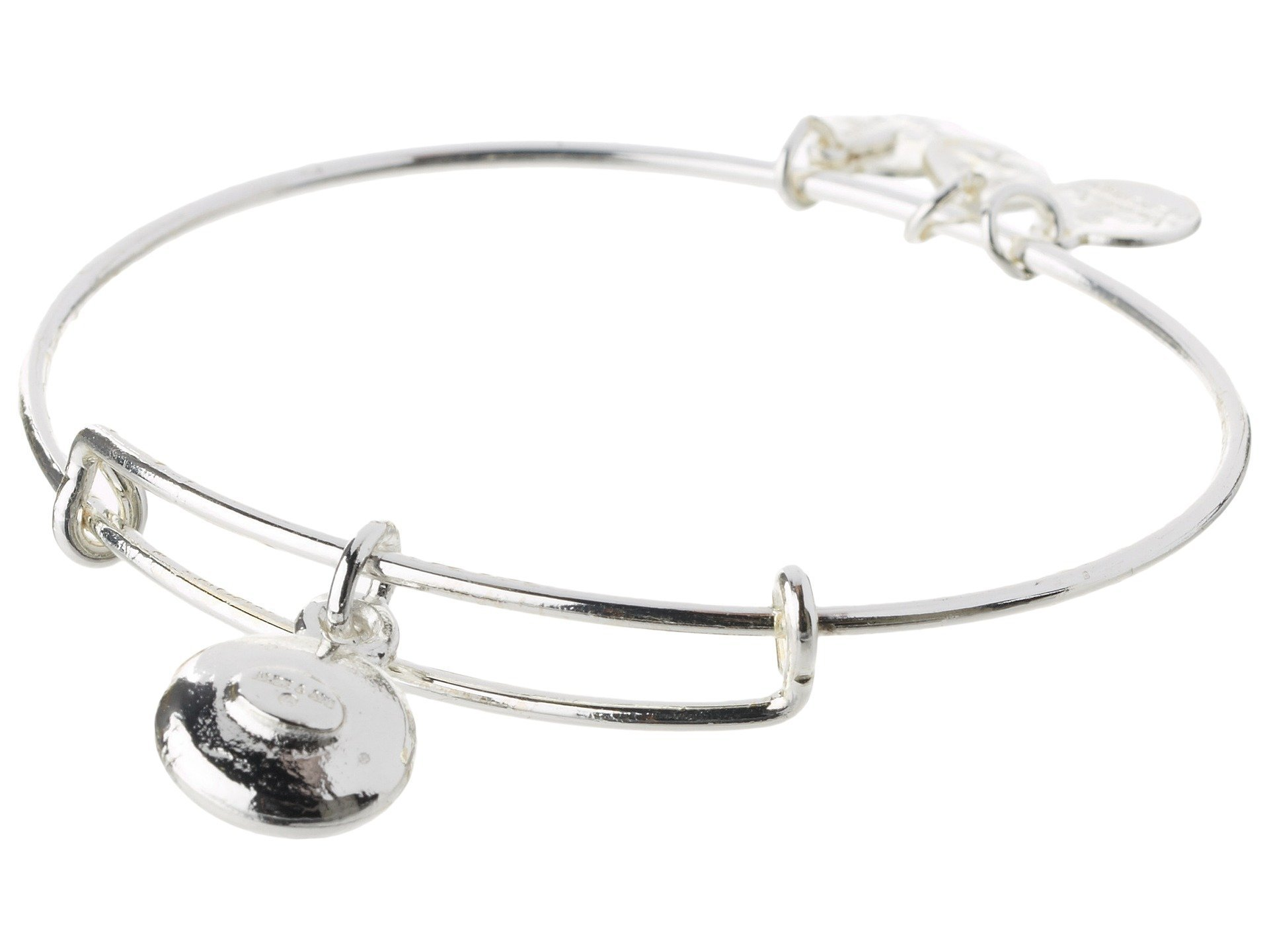 Alex and Ani★April Birthstone Charm Bangle▽送料関税込
