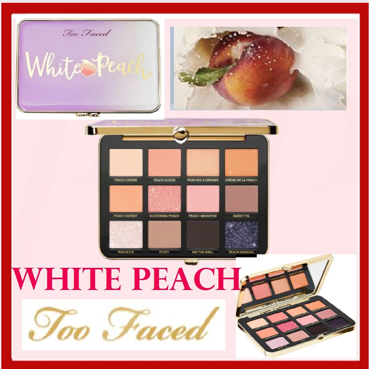 新作12色 (Too Faced) White Peach Eye Shadow パレット