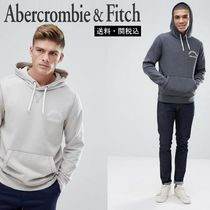 Abercrombie & Fitch チェストロゴパーカー