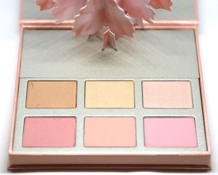Chantecaille チーク CHANTECAILLE L'Arbre Illumine チーク & ハイライターパレット(3)