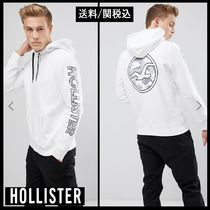 【Hollister Co.】Sleeve Camo Print Logo プルオーバーパーカー