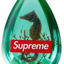 16A/W  Supreme Seahorse Keychain キーチェーン