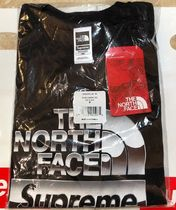 18SS Supreme The North Face Metallic Logo T-Shirt 送込追跡有