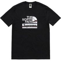 18S/S Supreme The North Face Metallic Logo T-Shirt Tee Black