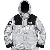 Supreme The North Face Metallic Mountain Parka