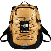Supreme The North Face Metallic Borealis Backpack