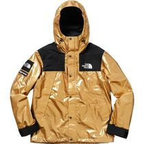 18SS Supreme/The North Face Metallic Mountain Parka Mサイズ