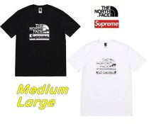 ★Supreme★The North Face Metallic Logo Tシャツ