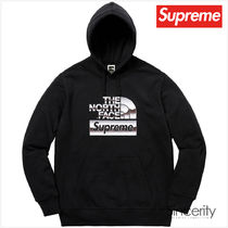 THE NORTH FACE METALLIC HOODED SWEATSHIRT / BLACK / MEDIUM