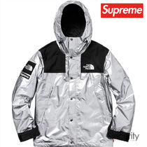 THE NORTH FACE METALLIC MOUNTAIN PARKA / SILVER / MEDIUM