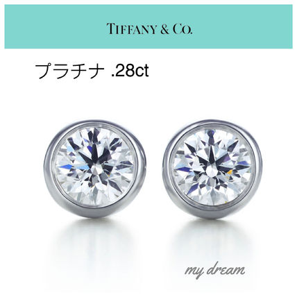 【Tiffany & Co】プラチナ☆By The Yard Earring  .28ct