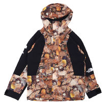 Supreme × The North Face Mountain Light Jacket リーフ