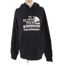 THE NORTH FACE METALLIC HOODED SWEATSHIRT [RESALE]