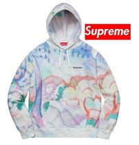 ★ Supreme ★ Landscape Hooded Sweatshirt 18SS  WEEK 15