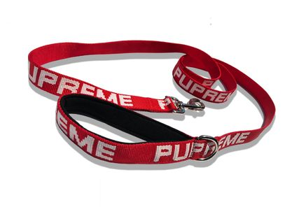 PAWMAINpets Pupreme Leash Red