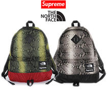 16week Supreme The North Face Snakeskin Lightweight Day Pack