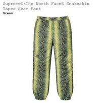 Supreme The North Face Snakeskin Taped Seam Pant Green