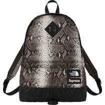 SUPREME THE NORTH FACE Snakeskin Lightweight Day Pack Black