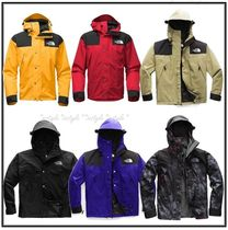 大人気☆THE NORTH FACE 1990 MOUNTAIN GTX JACKET 5色