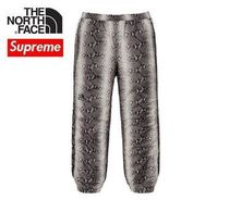 Supreme The North Face Snakeskin Taped Seam Pant / Black / M