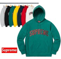 Supreme Water Arc Hooded Sweatshirt 18 FW  WEEK 2