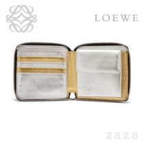 LOEWE★ロエベ Rainbow Square Zip Wallet Gold/Silver