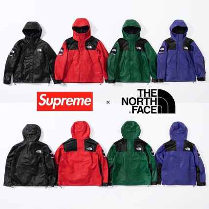 FW18 Supreme × The North Face Leather Mountain Parka