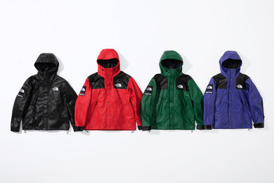 Supreme ジャケットその他 【AW18】Supreme x The North Face / Leather Mountain Parka(3)