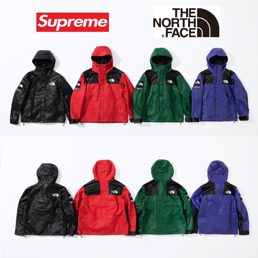 18FW Week9 Supreme The North Face Leather Mountain Parka 4色 (Supreme/マウンテンパーカー) 39101450