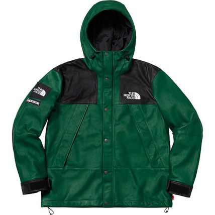 Supreme / The North Face Leather Mountain Parka