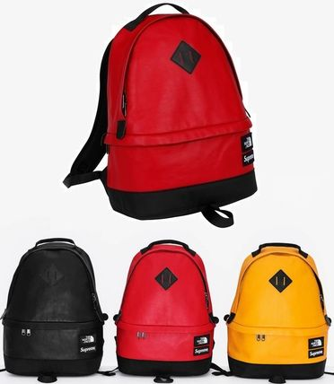 SUPREME X THE NORTH FACE LEATHER DAY PACK  SS17