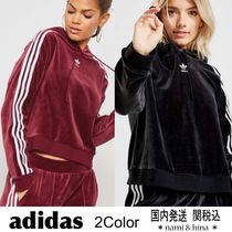 adidas originals/ adicolor ベロアフーディ