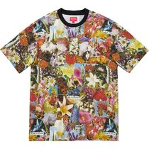 Supreme シュプリーム  Dream S/S Top 18 AW WEEK 13