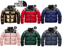 THE NORTH FACE WOMEN'S 1996 RETRO NUPTSE 【日本未入荷】