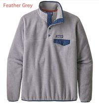 ☆Patagonia Lightweight Synchilla Snap-T Fleece Pullover☆