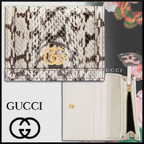 GUCCI グッチ 19SS Ophidia スネークスキン カードケース*白