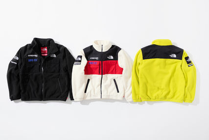 Supreme ジャケットその他 【WEEK15】Supreme(シュプリーム)xTNF EXPEDITION FLEECE JACKET