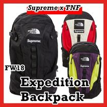 Supreme THE NORTH FACE Expedition Backpack AW 18 WEEK 15