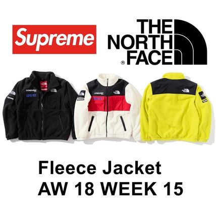 Supreme ジャケット Supreme The North Face Expedition Fleece Jacket AW18 WEEK 15