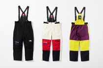 【WEEK15】Supreme(シュプリーム) x TNF EXPEDITION PANT/Ssize