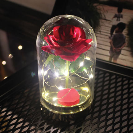VIA K★乾電池だからどこでもOK!twinkle rose dome LED