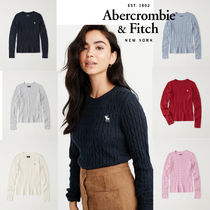 Abercrombie&Fitch*国内発送(追跡有送関込*Iconクルーネックknit