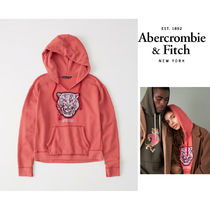 Abercrombie&Fitch*国内発送(追跡有)送関込*tigerロゴフーディー