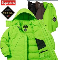 Supreme シュプリーム GORE TEX 700 Fill Down Parka  WEEK17