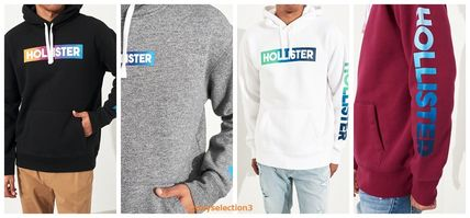 【Hollister】OMBRE LOGO HOODIE ♪ ホリスターパーカー