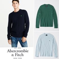 Abercrombie&Fitch*国内発送(追跡有)送関込*アイコンセーター