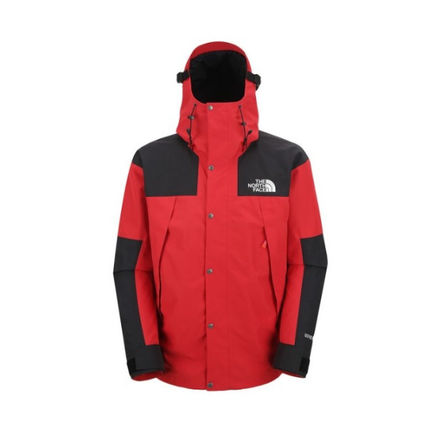 THE NORTH FACE ジャケットその他 【THE NORTH FACE】M'S 1990 GTX MOUNTAIN JACKET(9)