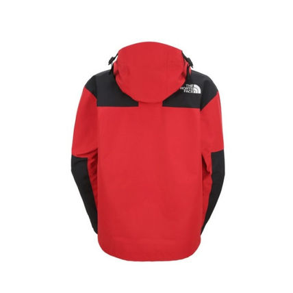 THE NORTH FACE ジャケットその他 【THE NORTH FACE】M'S 1990 GTX MOUNTAIN JACKET(11)